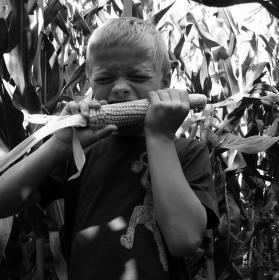 Kukuřičné dítě