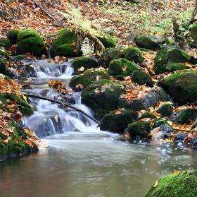 Podzimní Neštěmický potůček