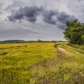 Pěkná procházka v nepěkném počasí aneb kterou cestou nezmoknem (nežzmoknem).