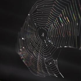 Pavoučí nitky ve větru