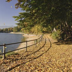 Podzimní ráno na vodní nádrži Harcov