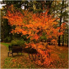 V zákoutí podzimu