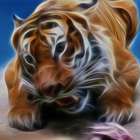 Panthera Tigris Fractaleae