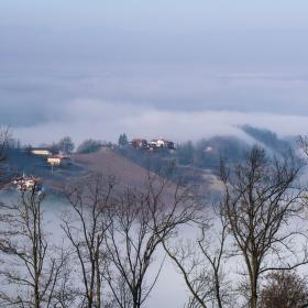 Mlha nad Albou