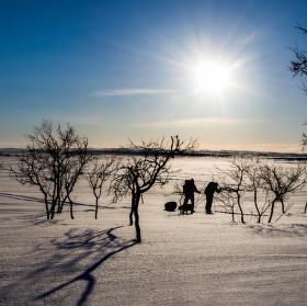 Ve finské zimní krajině