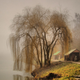 Přehrada Jestřabice v mlze   Krásné Vánoce všem :)
