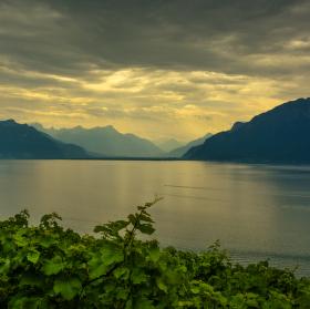 Ženevské jezero - SWISS