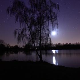 Měsíc a Jupiter na vrbě