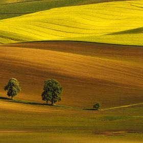 Južná Morava