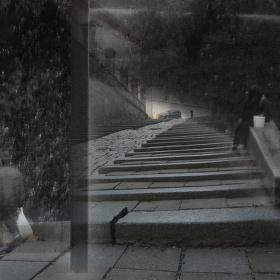 Černobílá variace