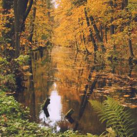 Podzimní povodí...