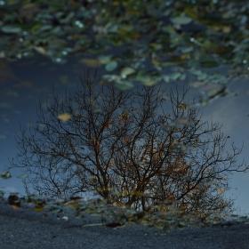 Podzim v zrcadle