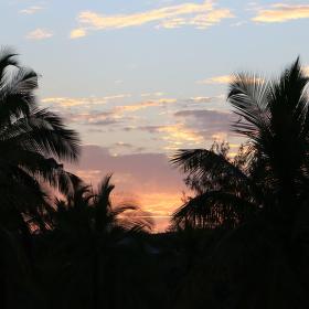 Zanzibarské večery