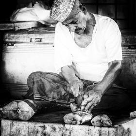 Rybář z Muscatu