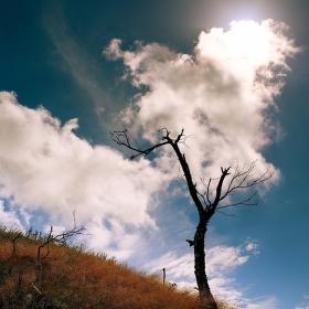 Krušný život v Krušných horách