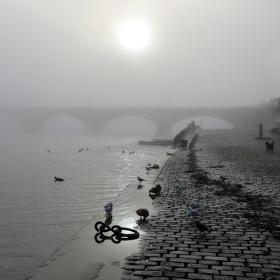 Mlha na náplavce