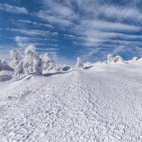 Na sněžnicích II