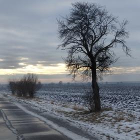Poslední sníh