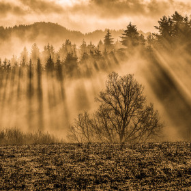 Sluneční sprcha