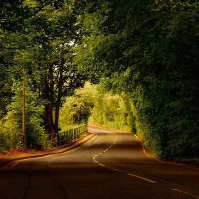 cesta do Rainhilu