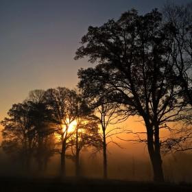 Novohradské ráno