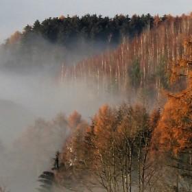 Ranní mlha v podkrkonoší