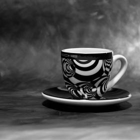 Porsche cup..