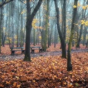 Vzpomínka na podzim II