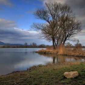 Pri jarnom rybníku