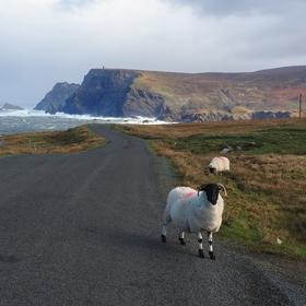 Kolem irského pobřeží