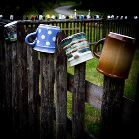 Hrnečky na plotě II