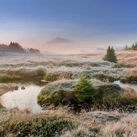Mlhavé ráno na jizerce