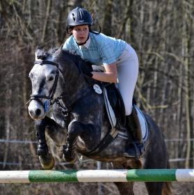 Pony na závodech