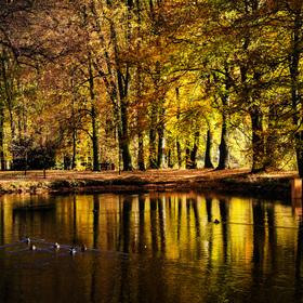 podzimní park