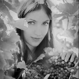 Víno 2