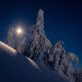Mesíčná noc