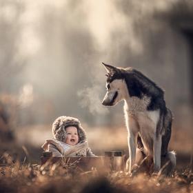 Sašenka a husky