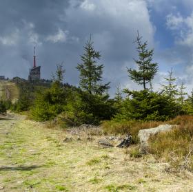 Lysá hora - vrchol 1323 m n. m.