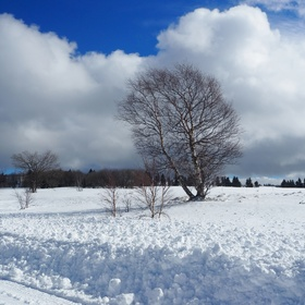 sněhová nadílka na Božím Daru