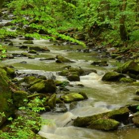 Terčino údolí, řeka Stropnice