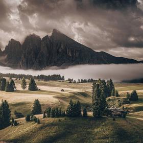 Alpe di Suisi | Dolomites