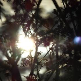záblesk světla