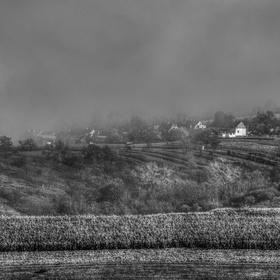 Mlhavé ráno za vesnicí
