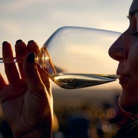 Vínko před západem
