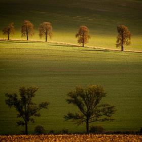 Slunce maluje v krajině