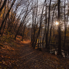 Podzimní procházka Mariánským údolím