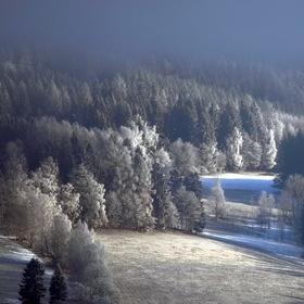 Letošní zima