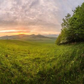 Hřejivý pohled z trávy