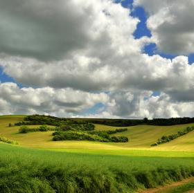 Kresba v krajině
