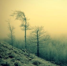 Mlha kolem Přísečnice